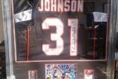 Johnson-Jersey-Frame-Capulet-Art-Gallery-Framing-Shop