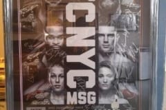 UFC Poster Frame - Capulet Art Gallery & Framing Shop