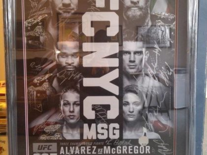 UFC Poster Frame